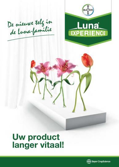 Luna EXPERIENCE bloembollen folder
