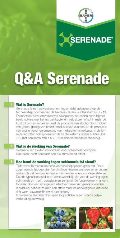 Serenade Q&A folder