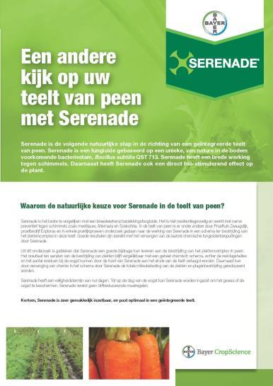 Serenade peen leaflet