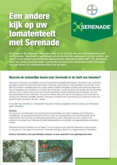 Serenade leaflet tomaat