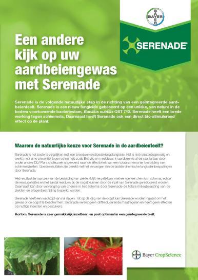 Serenade aardbei leaflet